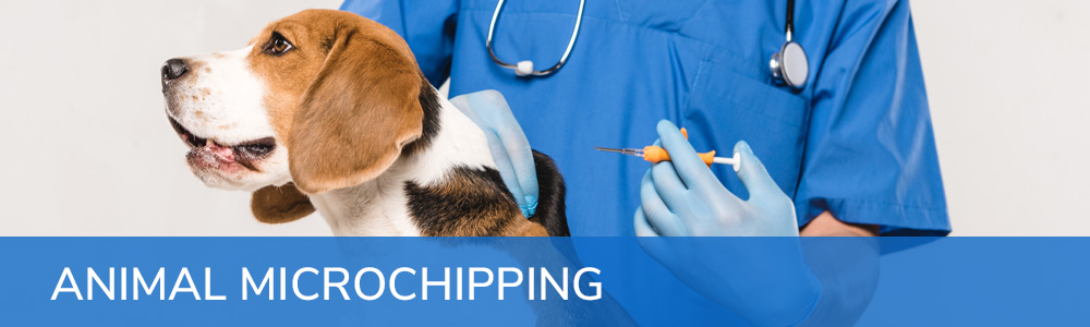Animal Microchipping