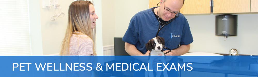 Pet Wellness & Medical Exams